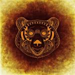 bear-1015157_960_720